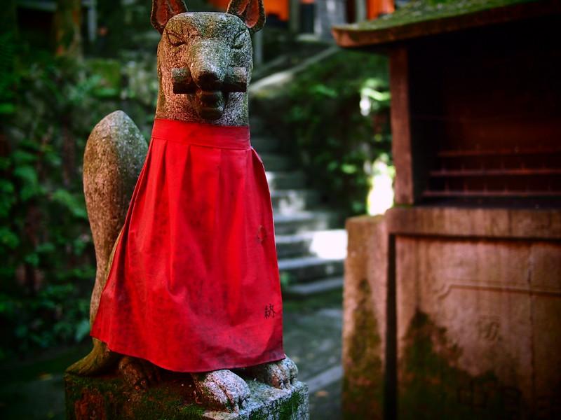 fox kyoto