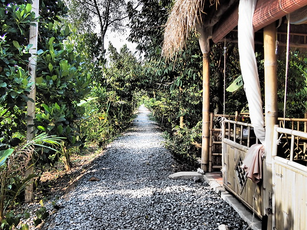 Gravel path to Nguyen Shack