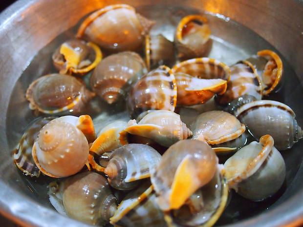 snails mui ne