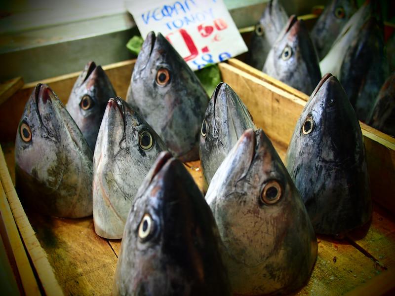 fish athens