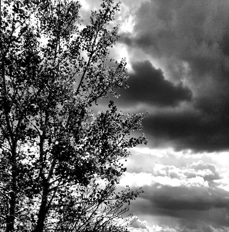 Grainy, rain-heavy clouds.