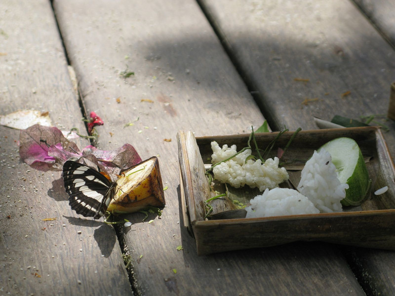 Balinese incense offering