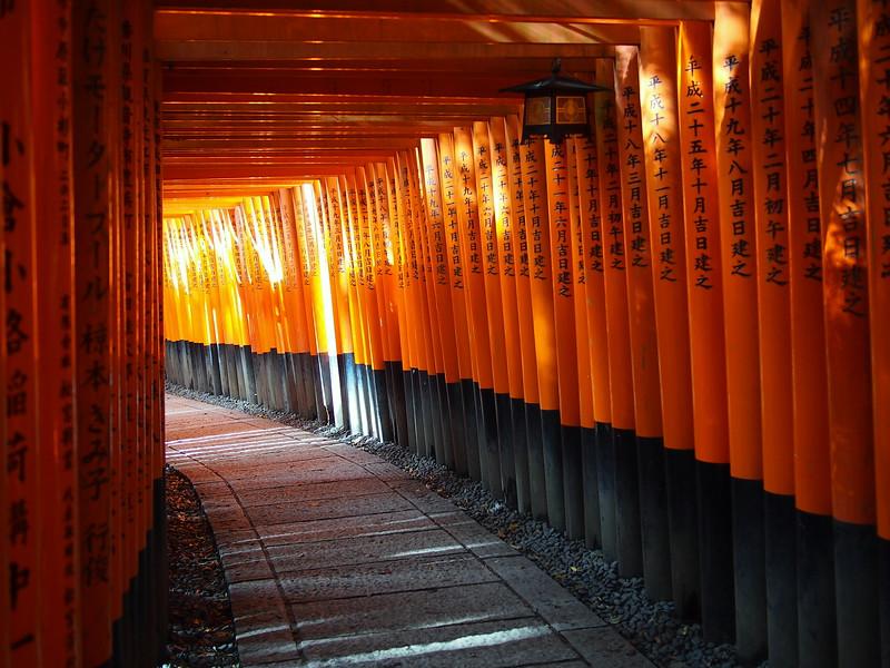 What to do in Japan: visit Fushimi Inari in Kyoto