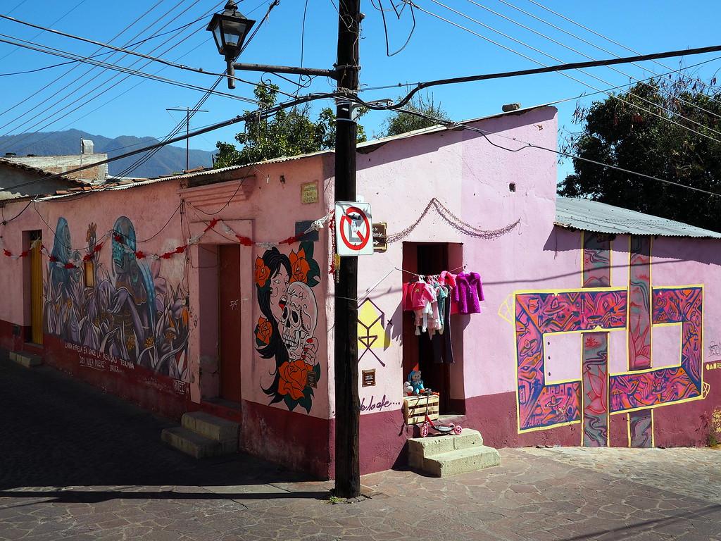 xochimilco street art in oaxaca